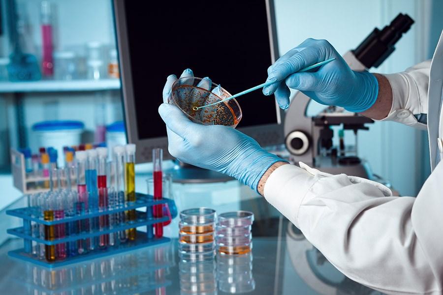 Gıdalarımızdaki Mikroskobik Düşmanlarımız