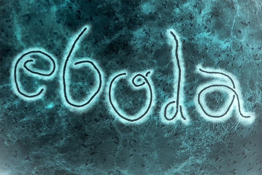 Ebola Nedir?