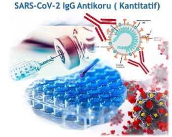 SARS-CoV-2 IgG Antikoru (Kantitatif)
